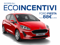 Fiesta Connect